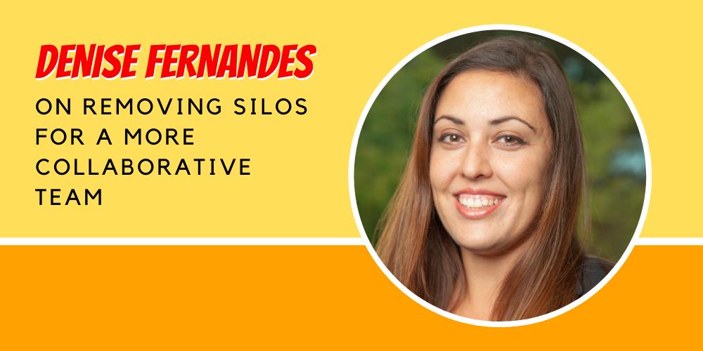 Denise Fernandes Nonprofit Silos